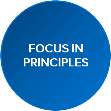 Focus in Principles