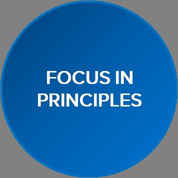Focus in Principles